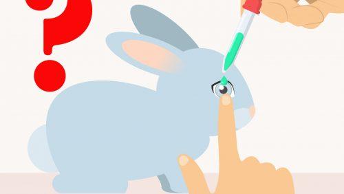 Kosmetik ohne Tierversuche: Ist deine Lieblingsmarke wirklich unbedenklich?